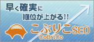 cobricoseo-banner